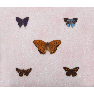 pissarides miranda - butterflies I