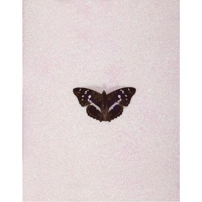 Butterfly by artist Miranda Pissarides