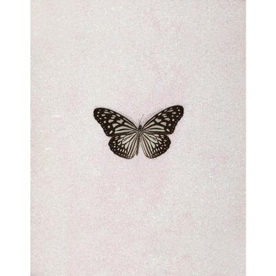 Miranda Pissarides art - butterfly IX