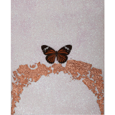 miranda pissarides butterfly vii